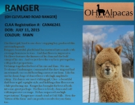 RANGER Stud Profile Pg 1