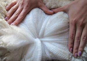 Luxurious Fleece