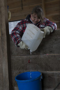 STERLING, Ont. (06/11/2015) -  Heather pours some water into a water bucket during Sunday chores.Photo by Callum Rutherford