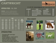 CARTWRIGHT Stud Profile Pg 2