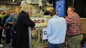 Alpaca Ontario members volunteered their time to staff the booth and greet visitors.