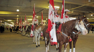 Canadian Cowgirls 2 low res