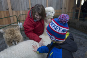 WELLINGTON, Ont. (05/11/2015) - A child pets an alpaca at the Drake Devonshire Christmas Market Photo by Callum Rutherford