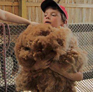 boy fleece