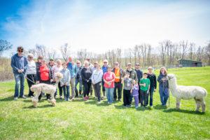 alpacas volunteers family team