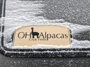 Oak Hills Alpacas sign covered in snow.